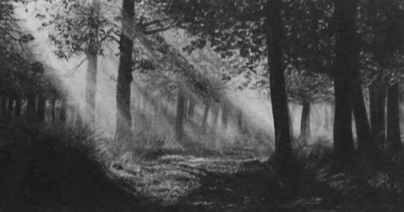 Exposição: artista usa grafite para desenhar paisagens em miniatura